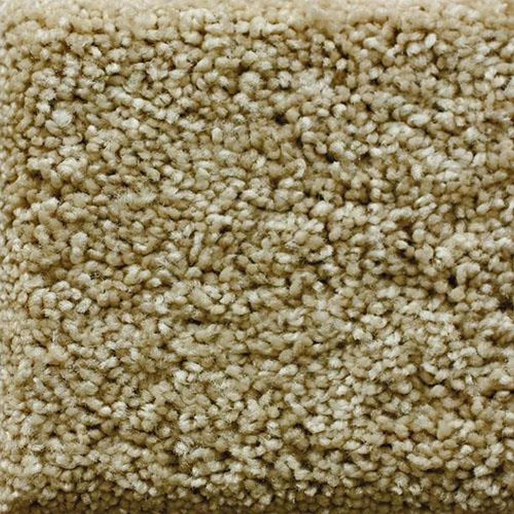 Science 12 Ft. 100% BCF P.E.T. Soft Polyester 33.3 Oz. Carpet - Bunsen Burner