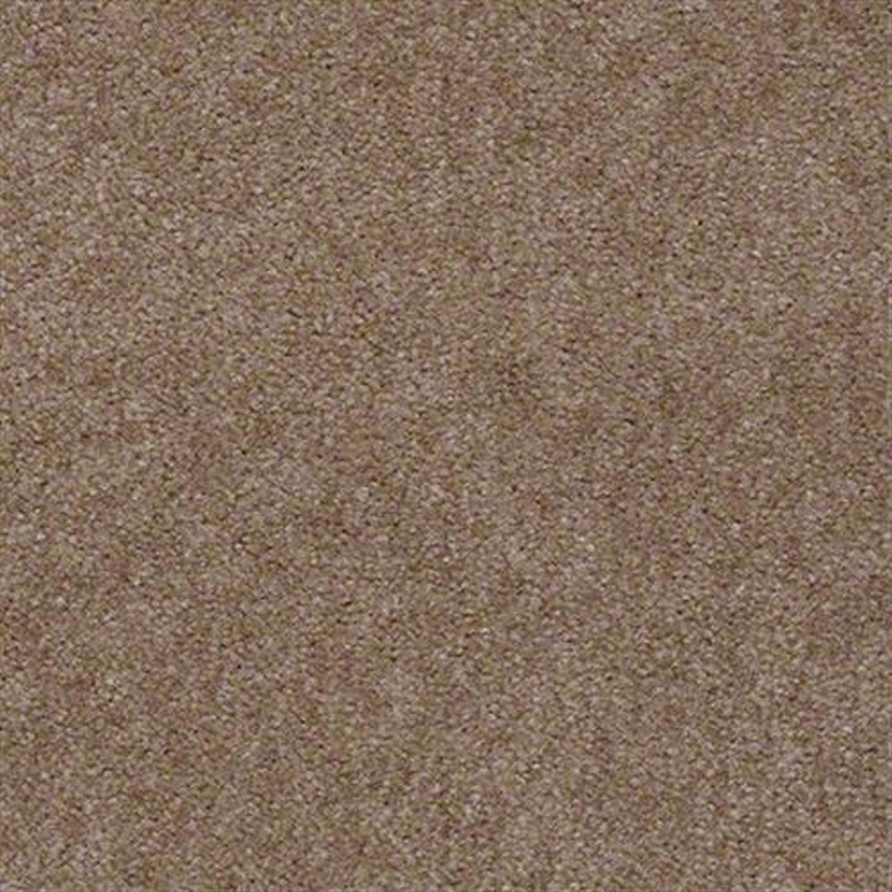 Aspen Classic 12 Ft. 100% Continuous Filament FHA Nylon 25 Oz. Carpet - Snakeskin