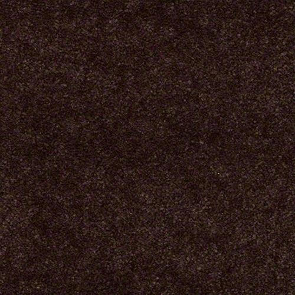 Aspen Classic 12 Ft. 100% Continuous Filament FHA Nylon 25 Oz. Carpet -Hickory