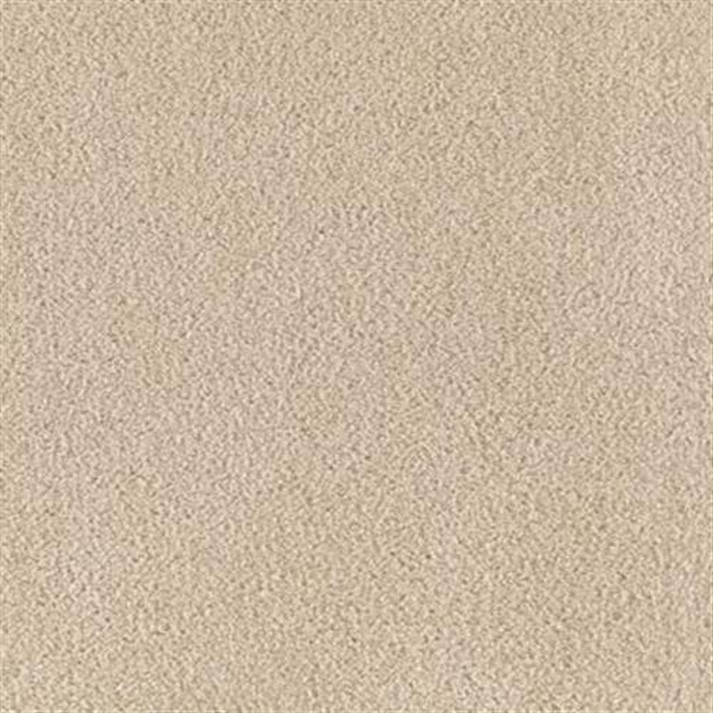 Carnival 12 Ft. Soft BCF Nylon w/Scotchgard 34.3 Oz. Carpet - Acrobat