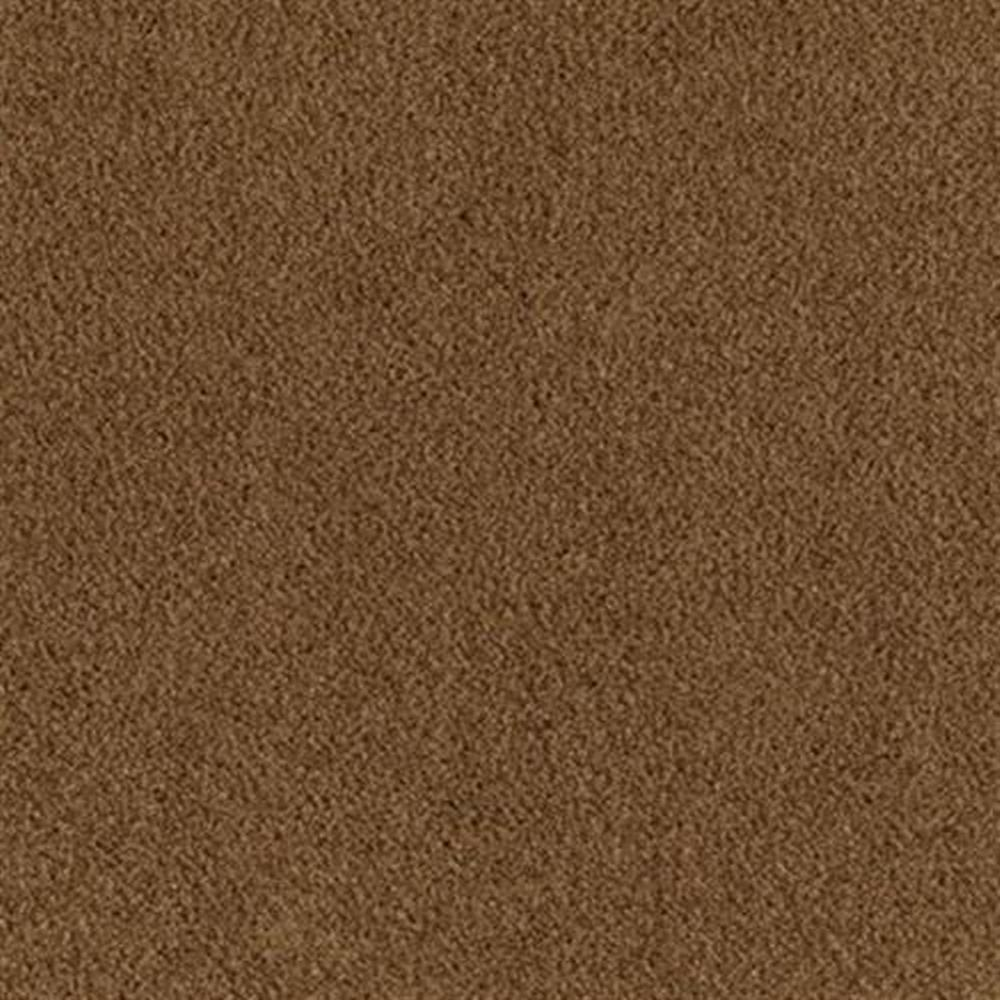 Carnival 12 Ft. Soft BCF Nylon w/Scotchgard 34.3 Oz. Carpet - Lion Tamer